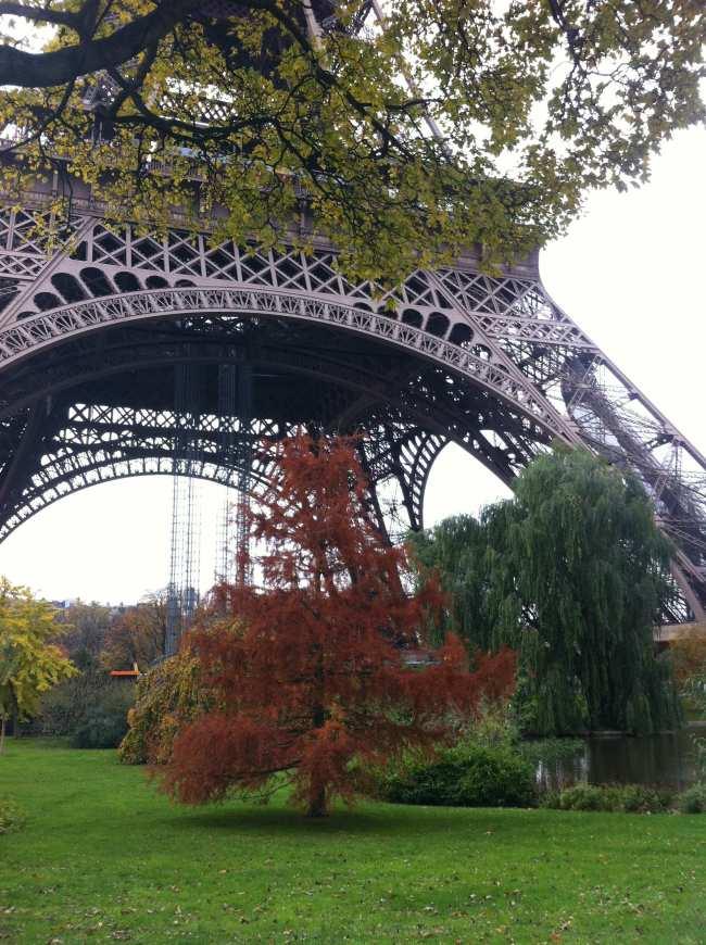 Autumn eiffel tower