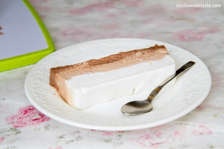 One layer of iced terrine